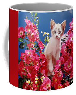 Roses Galore Coffee Mug