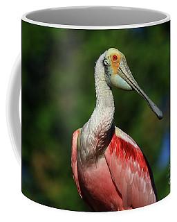 Coffee Mug featuring the photograph Rosetta Spoonbill Beauty by Deborah Benoit