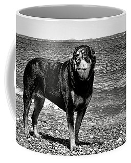 Rottweiler At The Shore Coffee Mug by Olivier Le Queinec