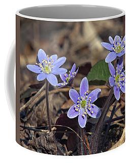 Round-lobed Hepatica Dspf116 Coffee Mug
