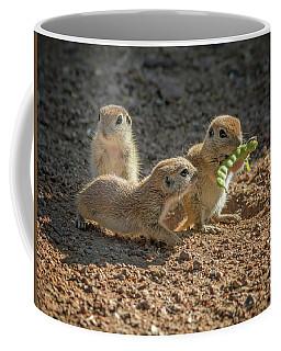 Round-tailed Ground Squirrels 1198 Coffee Mug