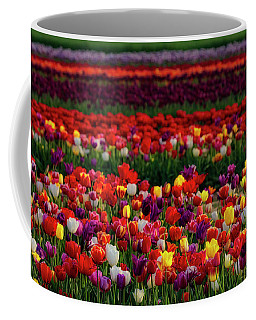 Coffee Mug featuring the photograph Rows Of Tulips by Susan Candelario