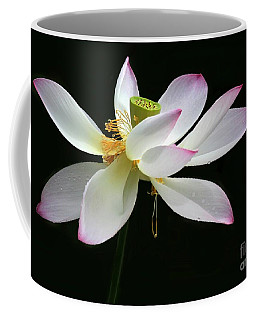 Royal Lotus Coffee Mug