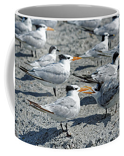 Coffee Mug featuring the photograph Royal Terns by Paul Mashburn