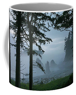 Ruby Beach II Washington State Coffee Mug