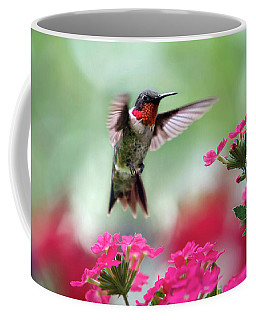 Beautiful Hummingbird Photographs Coffee Mugs