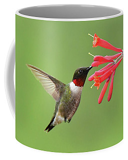 Ruby-throated Hummer Coffee Mug