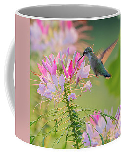 Ruby Throated Hummingbird 3 Square Coffee Mug