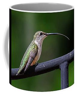 Ruby-throated Hummingbird Tongue Coffee Mug