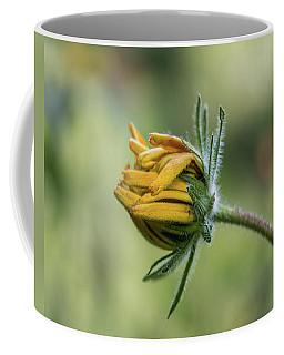 Rudbeckia Fuzzy Bud Coffee Mug