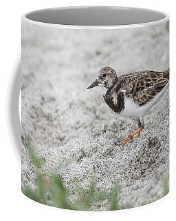 Ruddy Turnstone Foraging On The Beach Coffee Mug