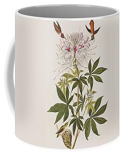 Ruff-necked Hummingbird Coffee Mug