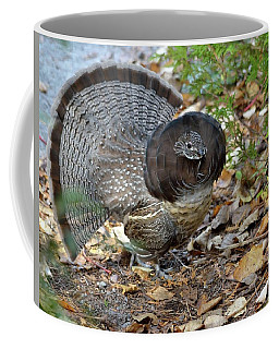 Ruffed Up- Ruffed Grouse Displaying Coffee Mug by David Porteus