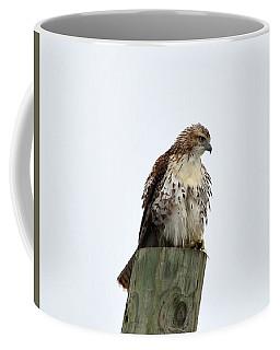 Ruffled Feathers Coffee Mug by Kathy Eickenberg