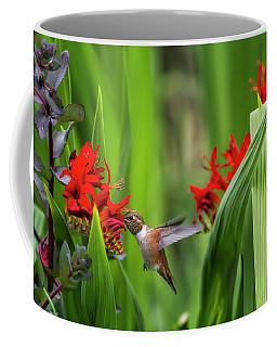 Coffee Mug featuring the photograph Rufous Hummingbird Feeding, No. 3 by Belinda Greb