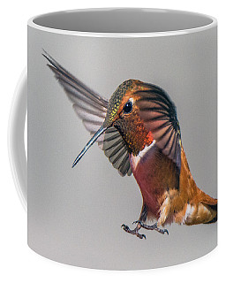 Rufous Male Hummingbird Coffee Mug