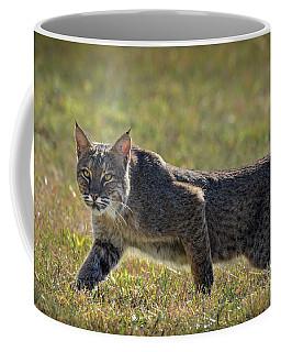 Rufus Coffee Mug