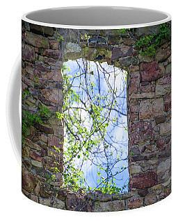 Coffee Mug featuring the photograph Ruin Of A Window - Bridgetown Millhouse  Bucks County Pa by Bill Cannon