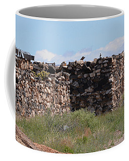 Coffee Mug featuring the photograph Ruins by Debby Pueschel