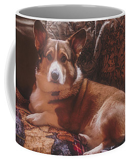 Coffee Mug featuring the photograph Rukky's Winter Pose 2016 by Mick Anderson