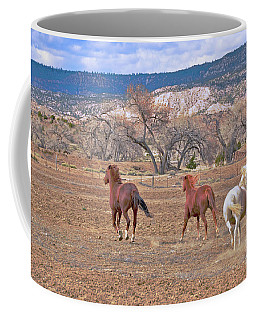 Coffee Mug featuring the photograph Run With The Wind Under The Storm Clouds by Debby Pueschel