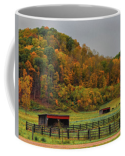 Rural Beauty In Ohio  Coffee Mug