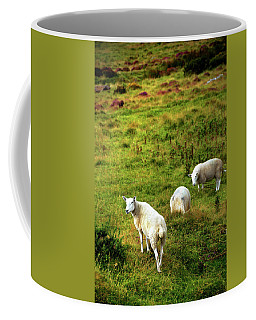 Coffee Mug featuring the photograph Rural Idyll. Wicklow. Ireland by Jenny Rainbow