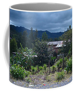 Rural Scenery 1 Coffee Mug