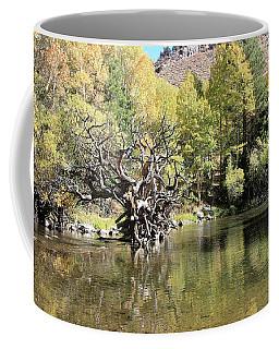 Coffee Mug featuring the photograph Rush Creek In Autumn by Sean Sarsfield