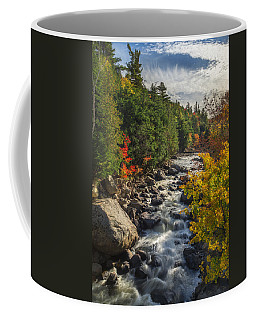 Rushing Waters Coffee Mug