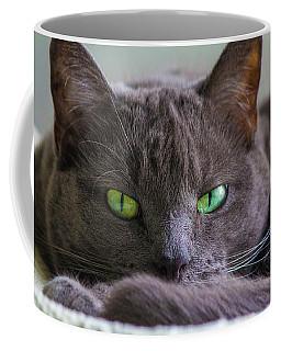 The Stare Coffee Mug