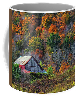 Rustic Out Building In Southern Ohio  Coffee Mug