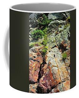 Rusty Rock Face Coffee Mug