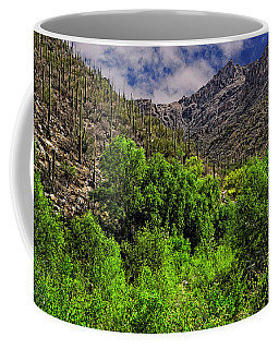 Coffee Mug featuring the photograph Sabino Canyon H33 by Mark Myhaver