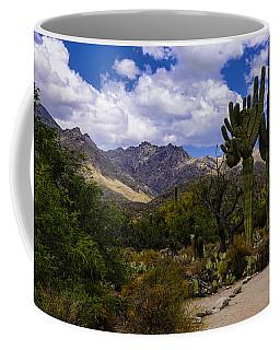 Sabino Canyon No4 Coffee Mug