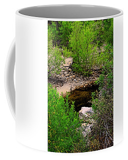 Coffee Mug featuring the photograph Sabino Canyon Op44 by Mark Myhaver