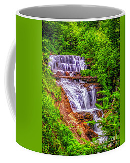 Coffee Mug featuring the photograph Sable Falls by Nick Zelinsky