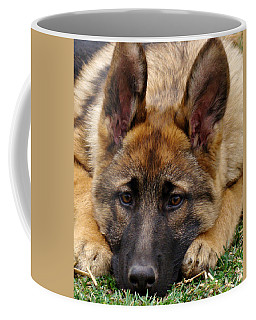 Sable German Shepherd Puppy Coffee Mug