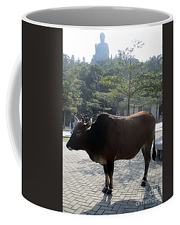 Coffee Mug featuring the photograph Sacred Cow 3 by Randall Weidner