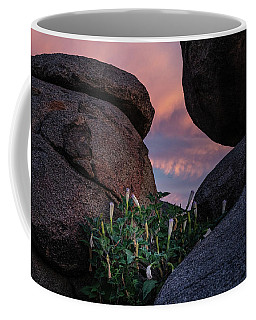 Coffee Mug featuring the photograph Sacred Datura Amongst The Boulders by Gaelyn Olmsted