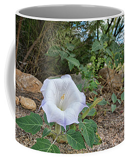 Coffee Mug featuring the photograph Sacred Datura by Dan McManus