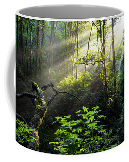 Sacred Light Coffee Mug