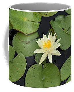 Sacred Lotus Coffee Mug