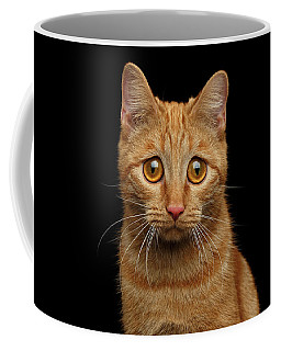Sad Ginger Cat  Coffee Mug