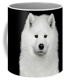 Coffee Mug featuring the photograph Sad Samoyed by Sergey Taran