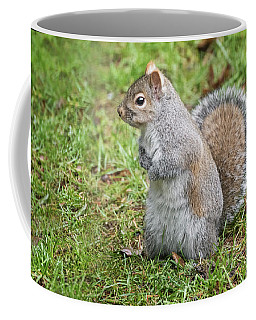 Sadie Squirrel Coffee Mug