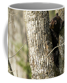 Coffee Mug featuring the photograph Safe From Harm by Everet Regal