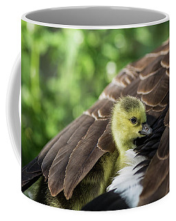 Safe Place Coffee Mug