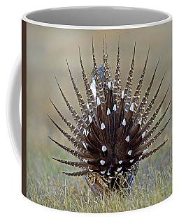 Sage-grouse Tail Fan Coffee Mug
