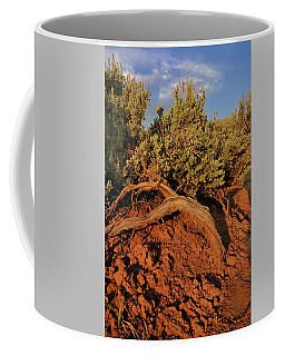 Coffee Mug featuring the photograph Sagebrush At Sunset by Ron Cline